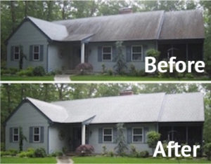 roof-mold-wooster