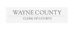 https://waynecountycsea.org/wp-content/uploads/sites/167/2021/01/wayne-county-clerk-of-courts-250x103-1.png