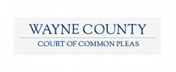 https://waynecountycsea.org/wp-content/uploads/sites/167/2021/01/wayne-county-common-pleas-court-250x103-1.png