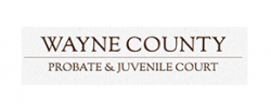 https://waynecountycsea.org/wp-content/uploads/sites/167/2021/01/wayne-county-probate-juvenile-court-250x103-1.png